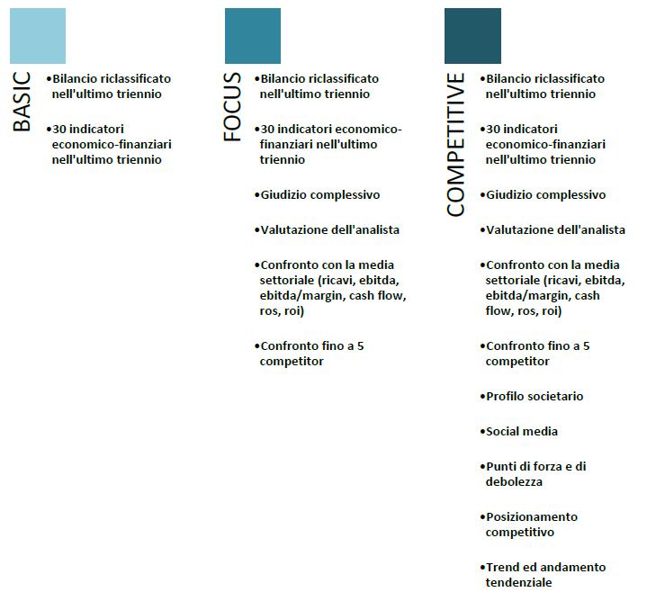 company profile-monitoraitalia