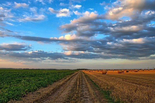 aziende agricole - monitoraitalia