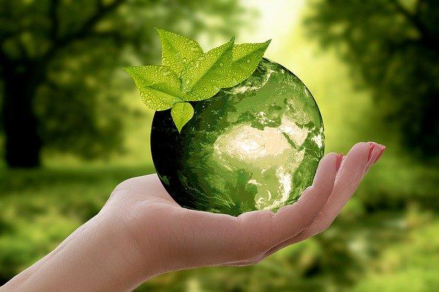 sostenibilità ambientale-sostenibilità economica